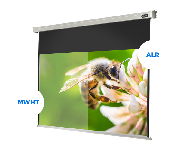 ALR projector screen